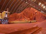 РФ увеличила экспорт калийных удобрений в январе-мае на 56%