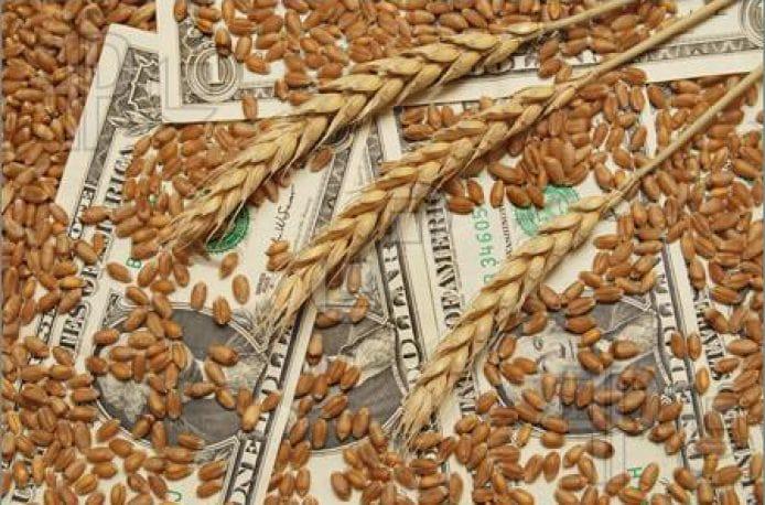 Нановитамины для растений из отходов металлургических производств могут повысить урожайность сельхозкультур