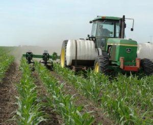 Минеральные удобрения не эффективны, считают американские ученые