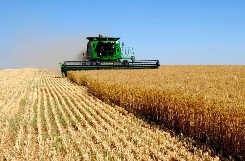 Правительство Киргизии не смогло в срок обеспечить фермеров удобрениями