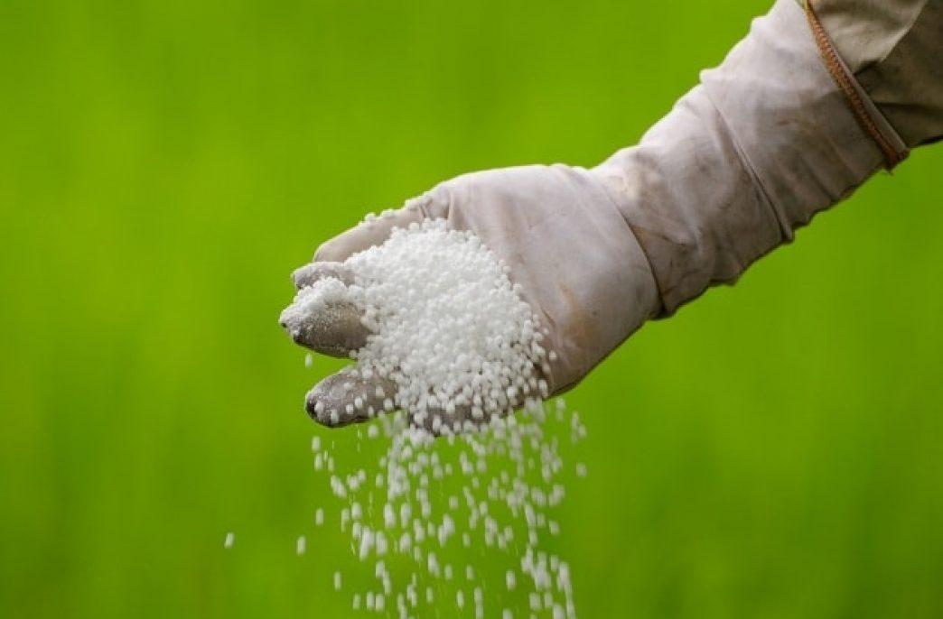 Что нужно знать о минеральных удобрениях