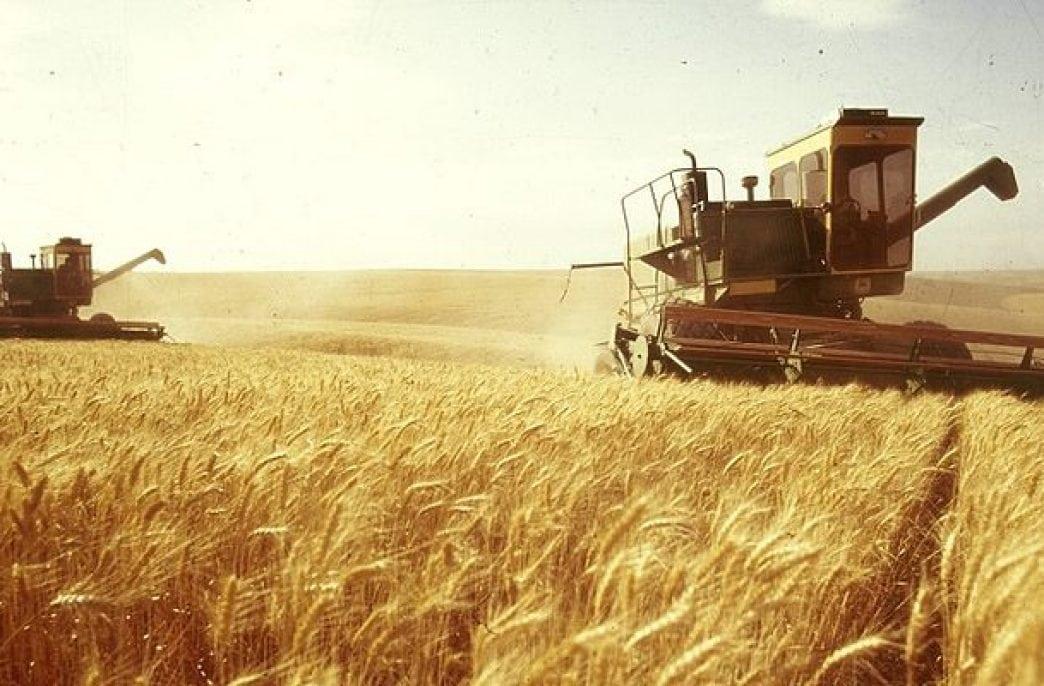 «ФосАгро» обеспечит Ростовскую область удобрениями