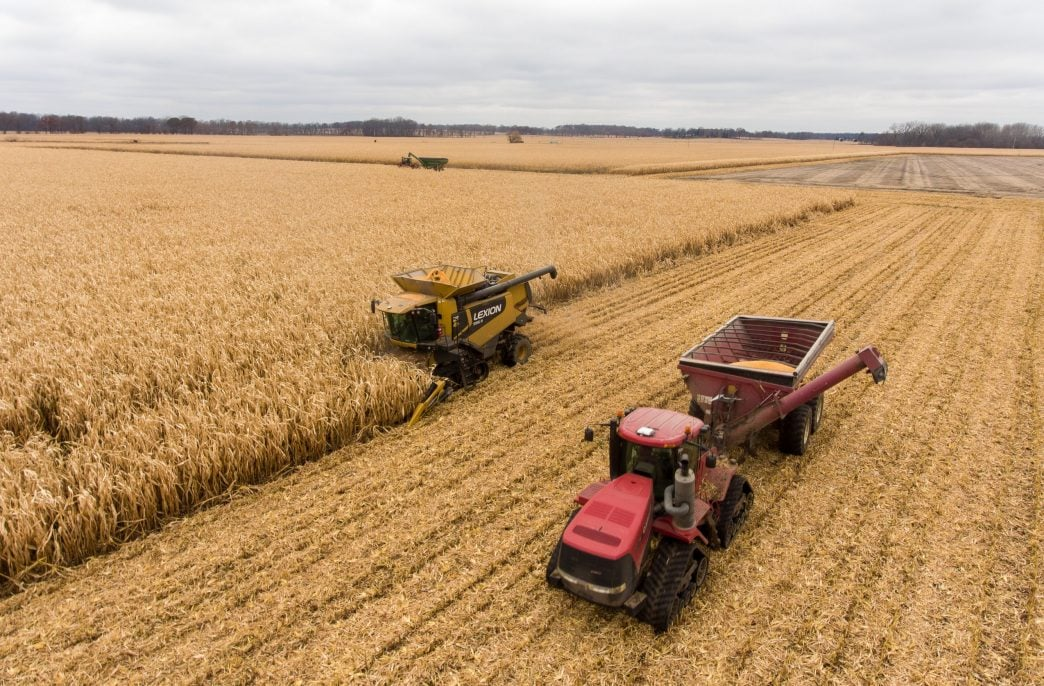 Китай отказался от ввоза Украинского зерна