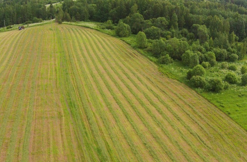 Минсельхоз получит первые данные космомониторинга сельхозземель
