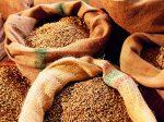 Россия может собрать 113 млн тонн зерна в 2016 году
