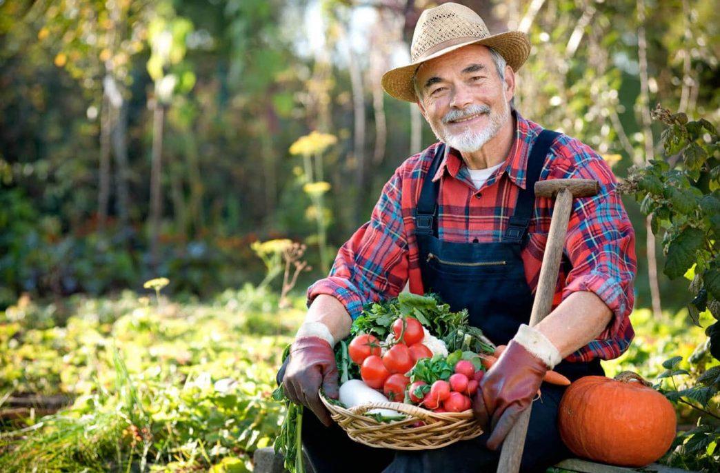 За десять лет количество фермеров сократилось на 40%