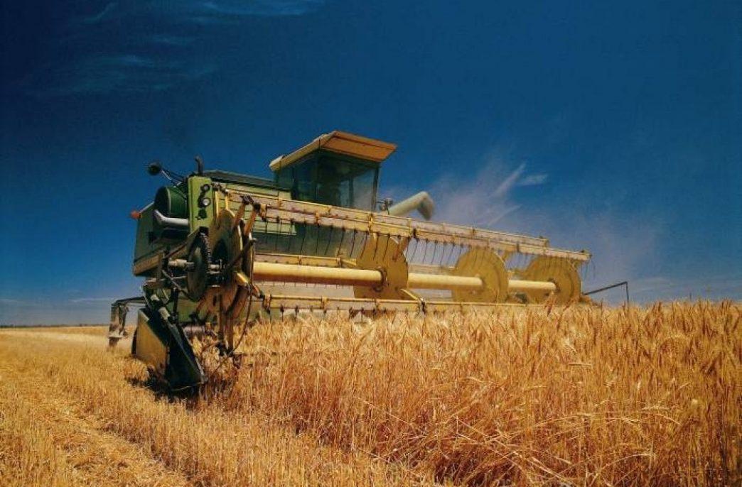 В Нижнекамском районе собрали более 70 тыс. тонн зерна