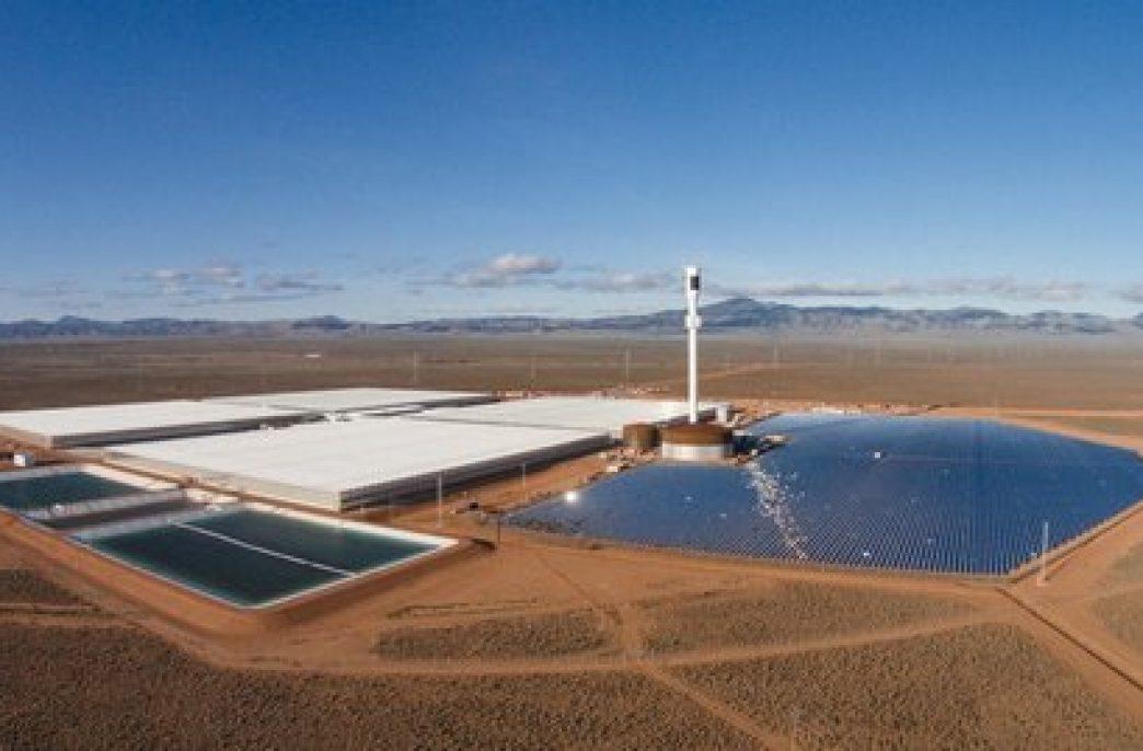 Первая в мире «солнечная» ферма для выращивания овощей в пустыне