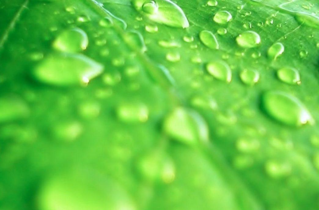 В Алтайском крае открыто новое производство гранулированных удобрений