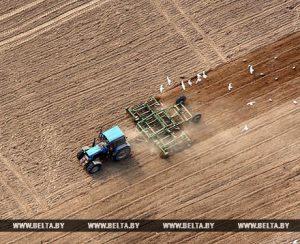 В Гродненской области посевные работы начнут в марте