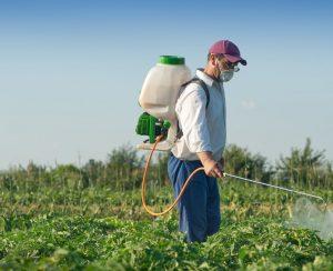 Современные инсектициды пагубно влияют на биологические часы человека и обмен веществ