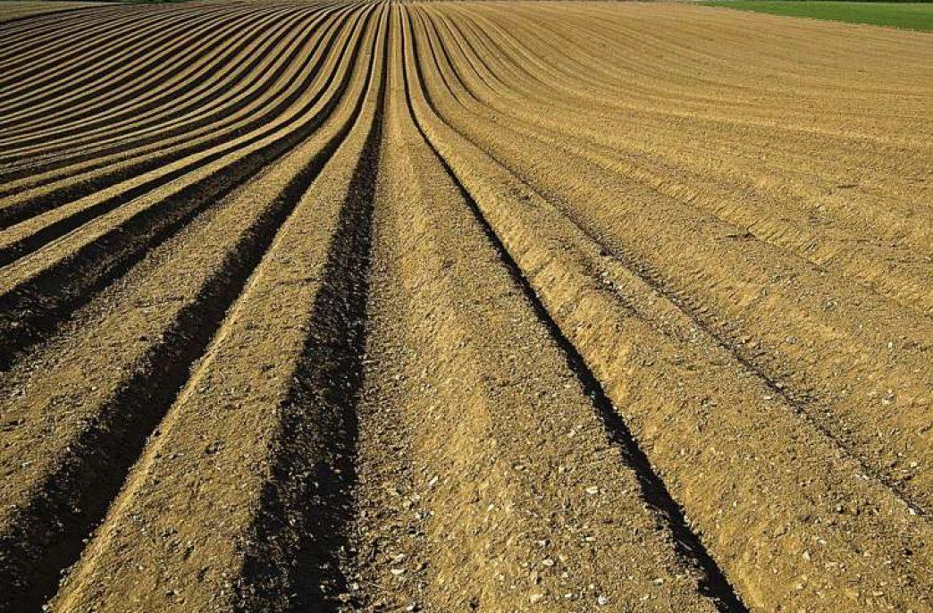 Корпорация развития Северного Кавказа инвестирует в удобрения