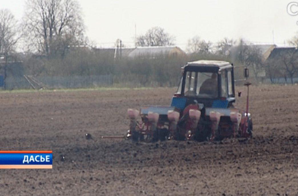 Беларусь — руководство Стародоржского района отрапортовало о готовности к севу