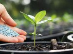 Рынок минеральных удобрений Казахстана находится в критическом состоянии