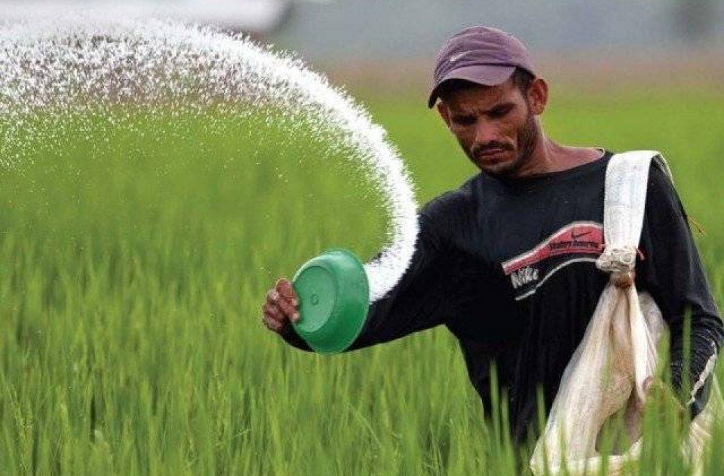 Несмотря на субсидии, цены на удобрения в Пакистане все еще высоки