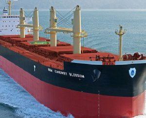 В Панаме задержано судно с фосфатной рудой для компании Agrium
