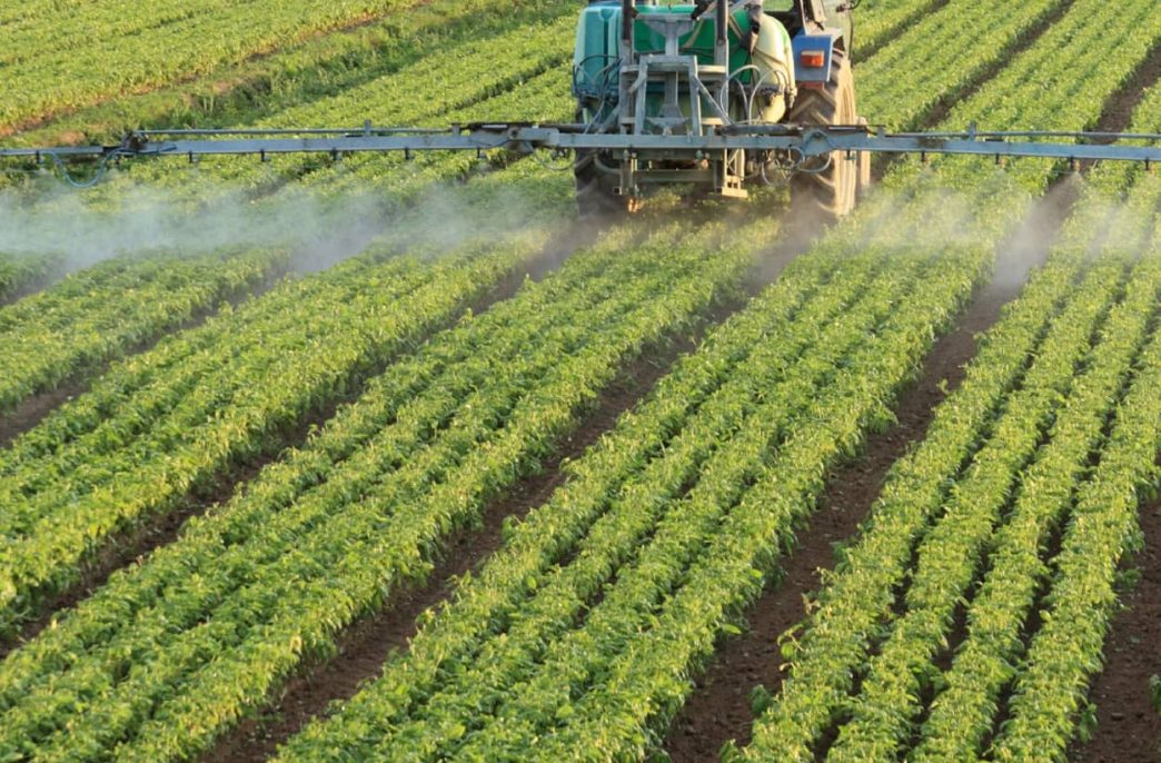 «Право на агрокультурные технологии», мнение биолога из Стэнфордского Университета