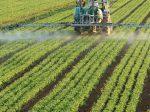 """""""Право на агрокультурные технологии"""", мнение биолога из Стэнфордского Университета"""