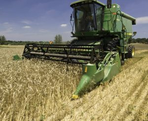 Британские ученые провели анализ влияния производства хлеба на парниковый эффект в атмосфере