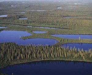 K+S Potash Canada выделила 2,8 млн. долл. на защиту окружающей среды