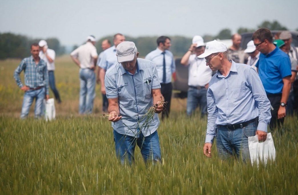 В Промышленновском районе прошел форум «Кузбасский день поля»