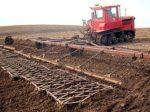 Уральские аграрии получили свыше двух миллиардов рублей господдержки