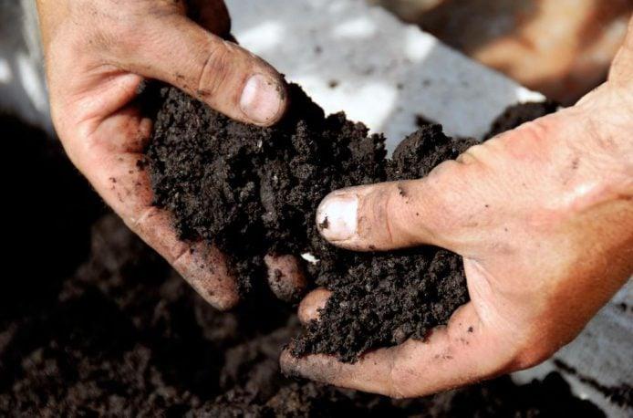 Этим летом в ряде штатов Среднего Запада пройдут полевые семинары по уходу за состоянием почвы