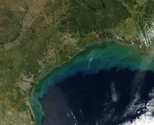 В этом году «мертвая зона» в Мексиканском заливе станет третьей по величине в мире