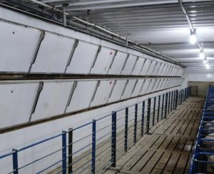 Automated Production Systems выводит на рынок новые системы вентиляции для свиноводческих ферм