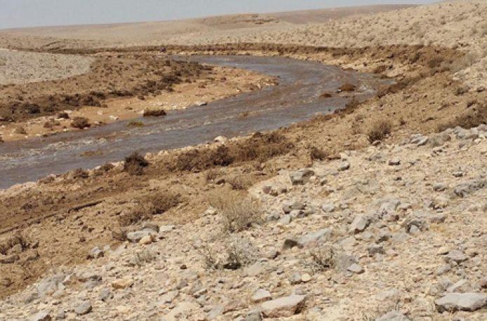 Крупная утечка кислотных отходов произошла на заводе по производству удобрений Israel Chemicals