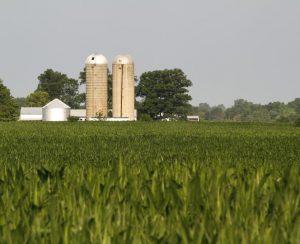 Компания San Joaquin Sulphur Co выплатит штраф в 25 тыс. долларов за продажу удобрений под видом пестицидов