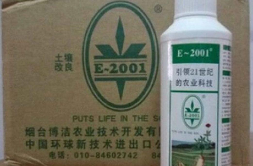 Найдено средство против позеленения цитрусовых, считают китайские специалисты