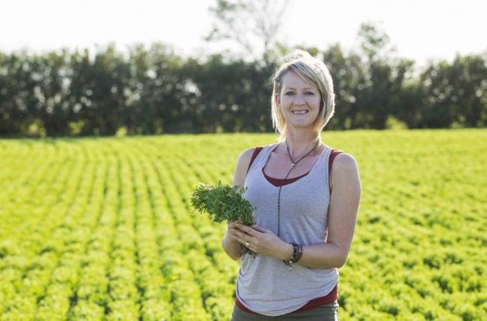 Канадские фермеры рекомендуют: выращивание чечевицы позволяет сэкономить на азотных удобрениях в севообороте
