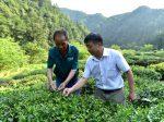 Возникновение органического чая в Китае, как одной из составляющих экологической безопасности будущего