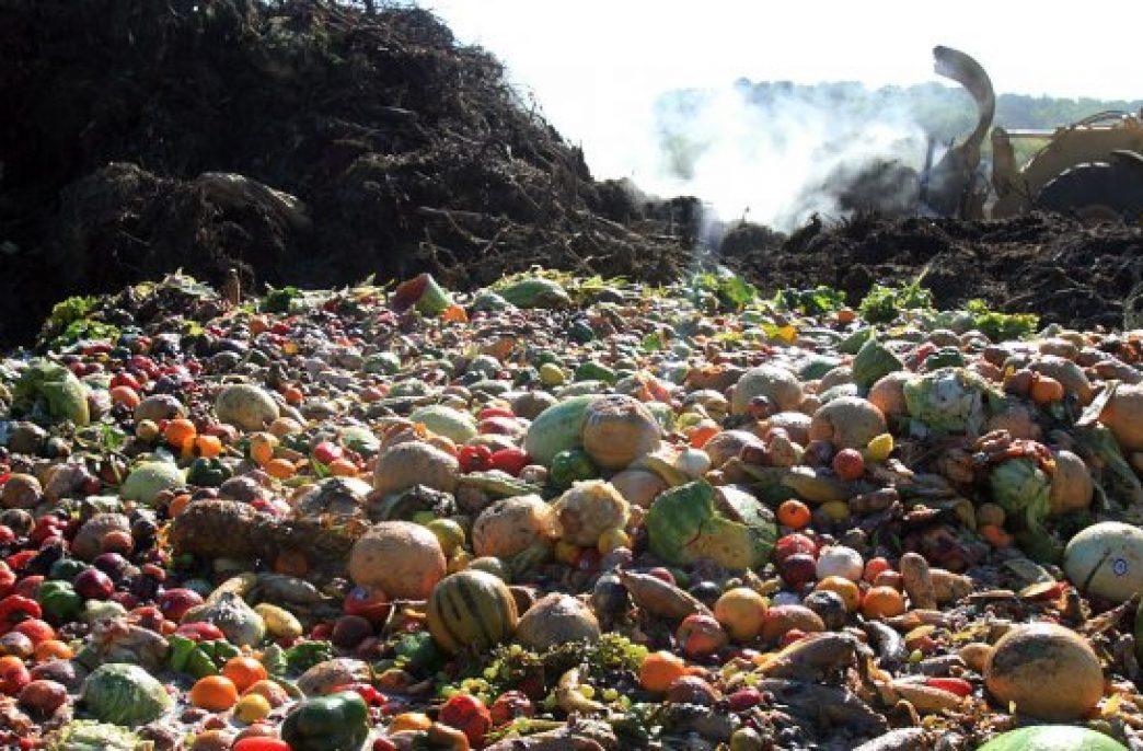 Иранские ученые разрабатывают технологию производства компоста из рисовых отходов