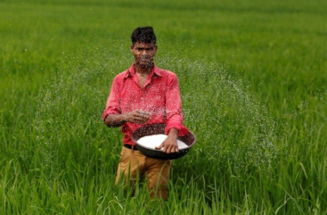 В Пакистане продажи мочевины за июль снизились вдвое