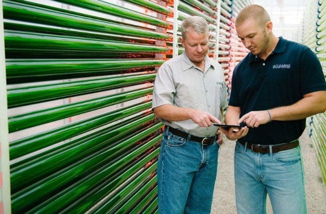 Clearas Water Recovery изобрела новый способ очистки сточных вод от азота и фосфора