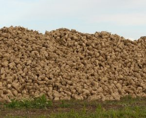 В Волыни начнутся поставки органических удобрений из отходов биоэтанола