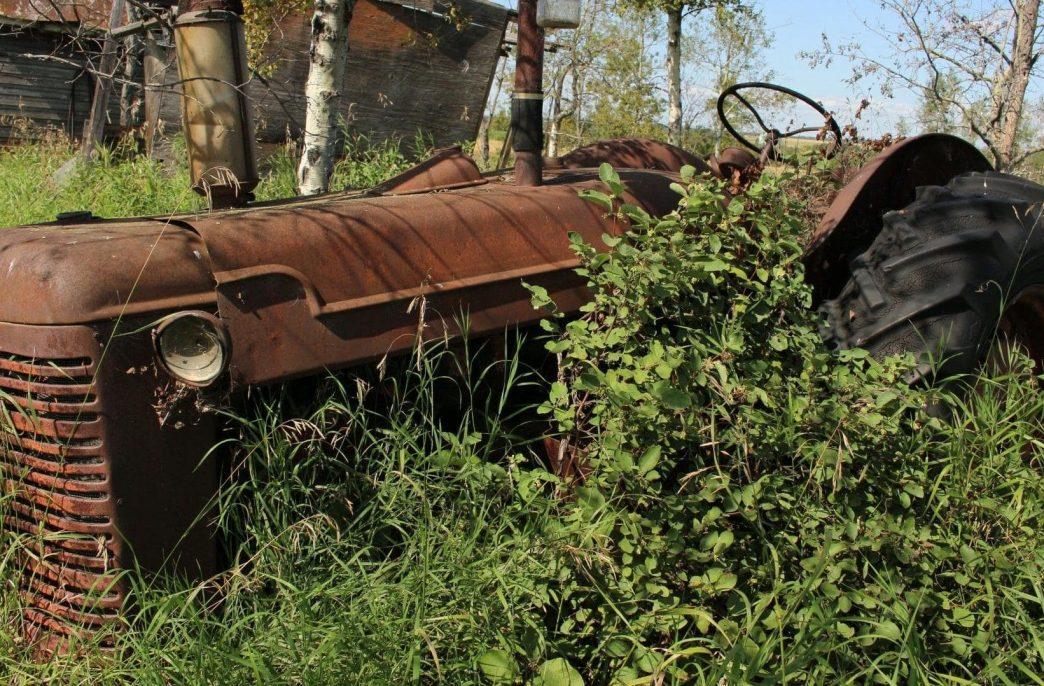 Глава Ленобласти поделился о последствиях введения антироссийских санкций для сельского хозяйства