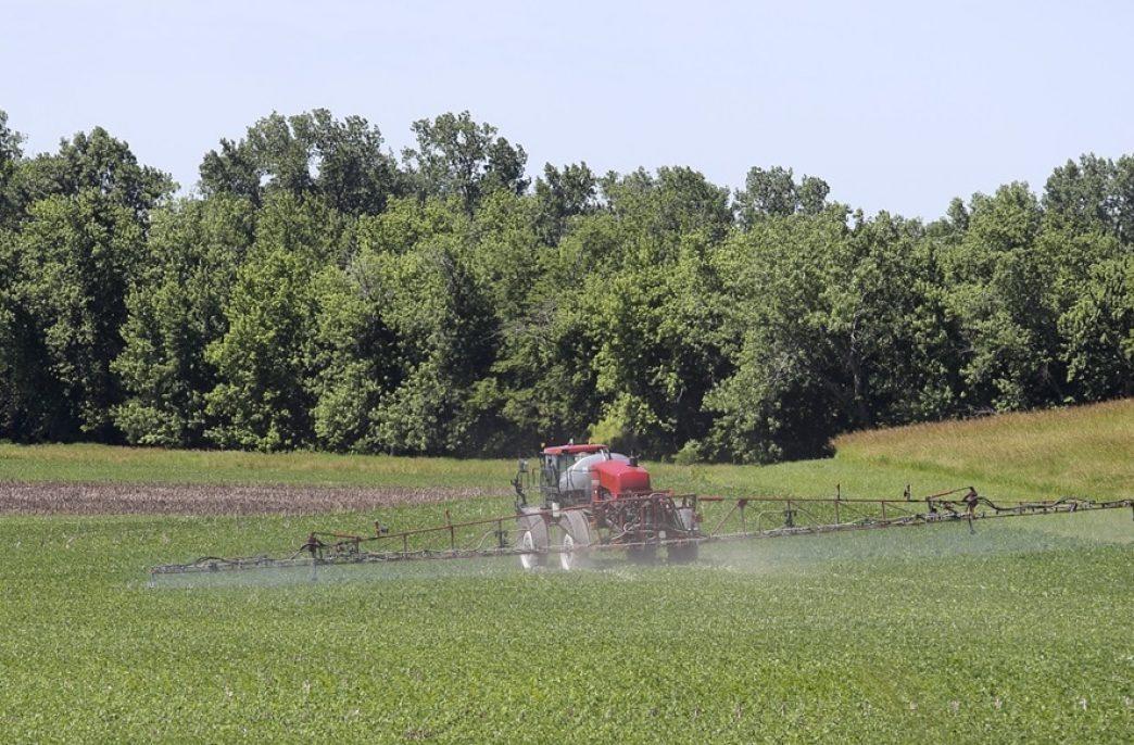 Проблемы с дикамбой в штате Арканзас вынудили власти вновь запретить данный гербицид