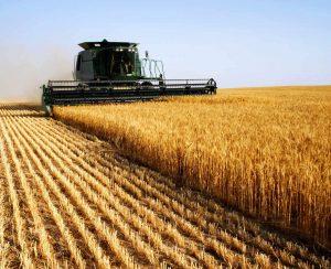 На развитие сельского хозяйства России будет выделено свыше 50 млрд. рублей