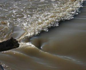 «Мертвая зона» в Мексиканском заливе выросла до размеров штата Нью-Джерси