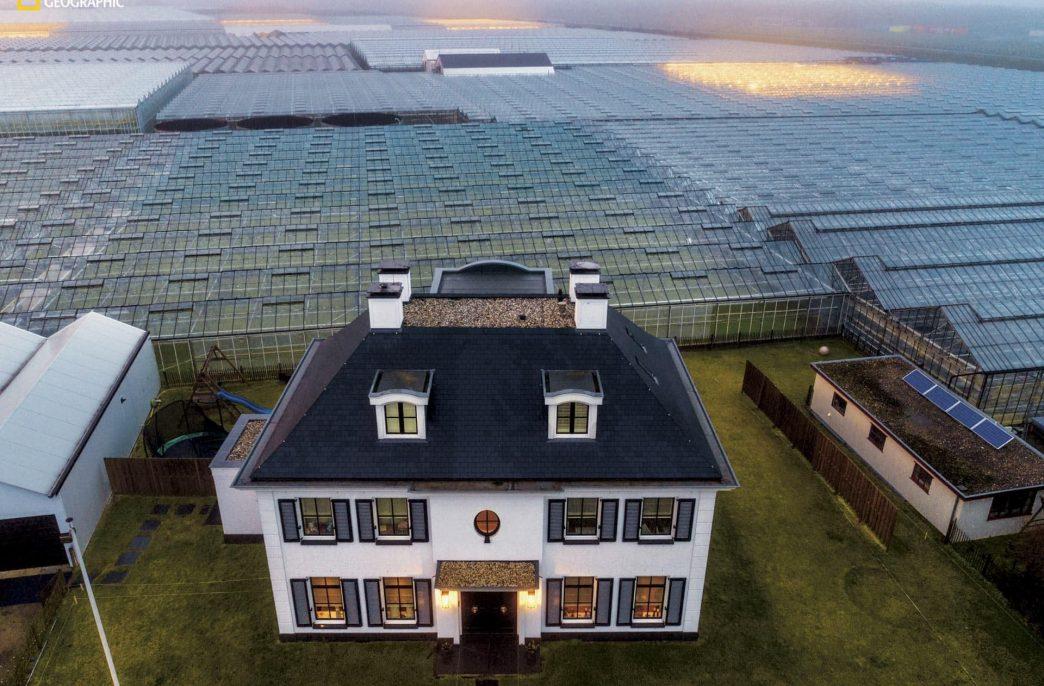 Высокие технологии в сельском хозяйстве — как Нидерланды стали вторым крупнейшим экспортером продуктов питания в мире
