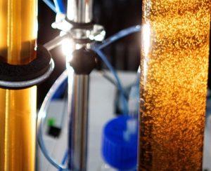 Ученые из Финляндии изобрели способ извлечения азота и фосфора из человеческой мочи