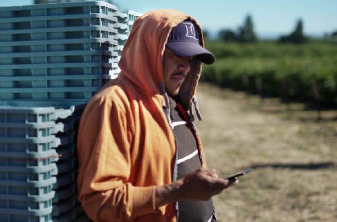 Ganaz — новый стартап из Сиеттла намерен упростить и удешевить процесс найма сельскохозяйственных работников