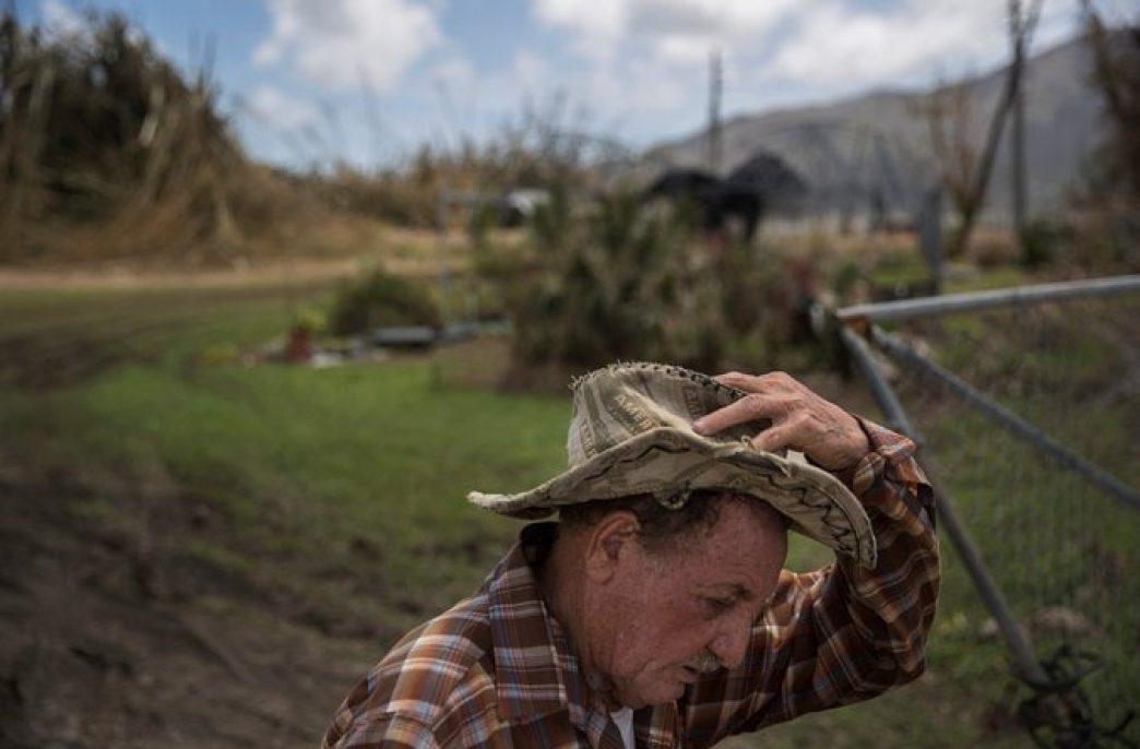 Ураган Мария почти полностью уничтожил сельское хозяйство в Пуэрто-Рико