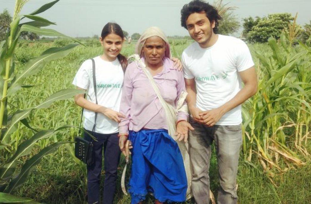 Новый стартап AgroWave поможет фермерам продавать свою продукцию по более справедливой цене