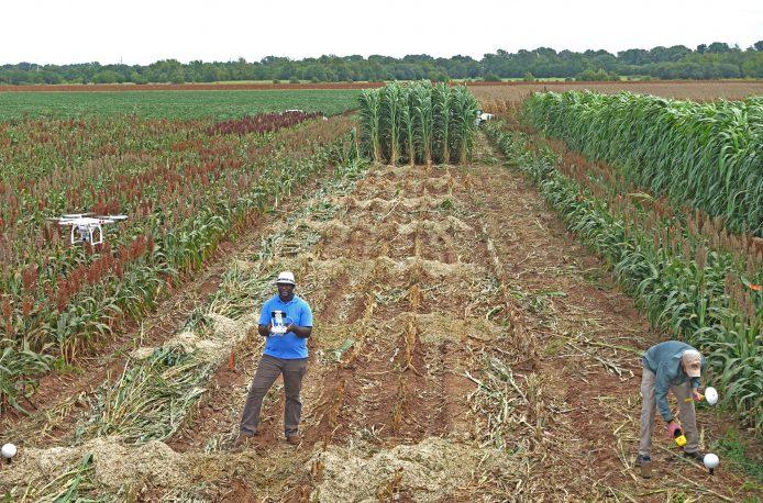 Трехмерное моделирование сельскохозяйственных посевов поможет аграриям сэкономить время и деньги
