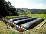 Биореакторы по переработке органических отходов помогут существенно сократить затраты фермеров