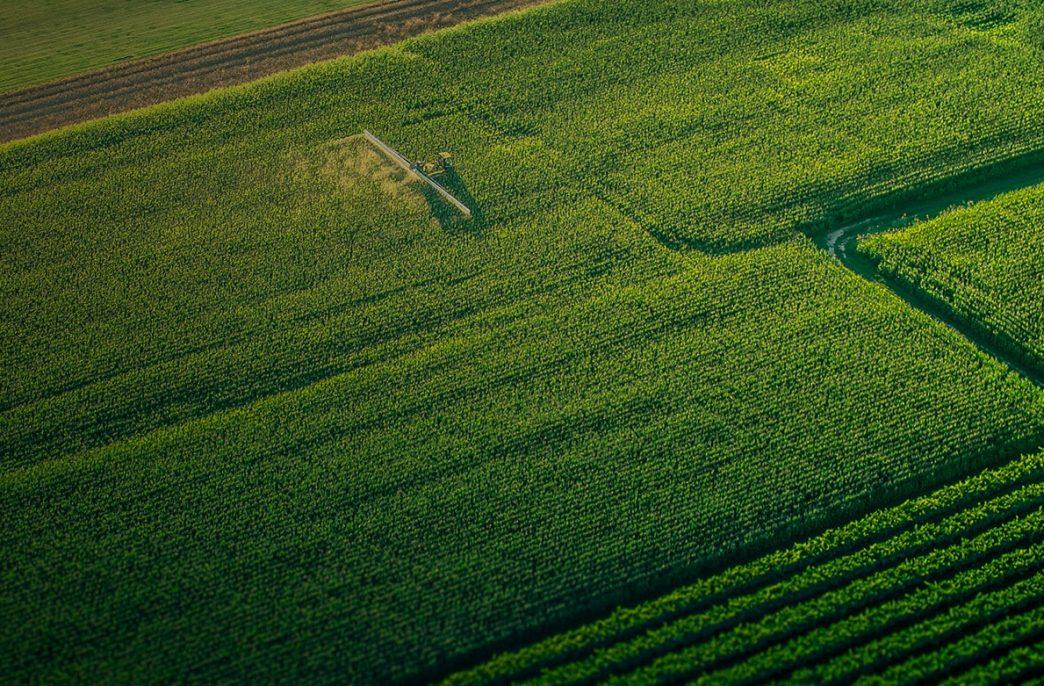 Анализ фотографических данных в сельском хозяйстве — от спутников до летающих дронов